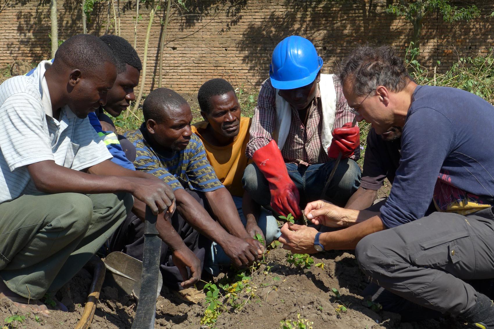 vsp onlus associazione volontariato volontari senior professionali missione africa
